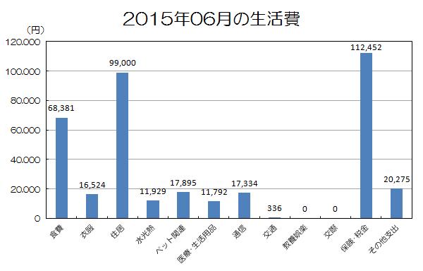 2015年6月の生活費.png