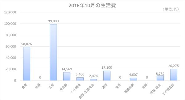 2016年10月の生活費.png