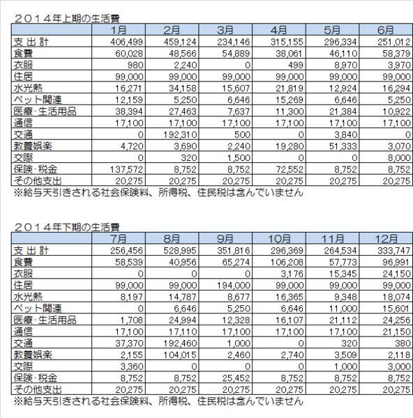 2014年の月別生活費.png